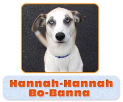 Hanna Hanna Bobana