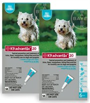 12 MONTH K9 ADVANTIX Teal (for dogs 11-20lbs)