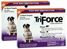 2 PACK - 3 MONTH TriForce Orange for DOGS 40-60 lbs