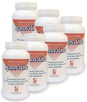 6 PK Synovicre for Medium and Large Dogs 600mg (720 tablets)