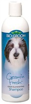 Bio-Groom Groom 'N Fresh Shampoo (12 fl oz)
