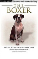 The Boxer - FREE DVD Inside
