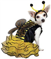 Casual Canine Bee Mine Costume Yellow - LARGE