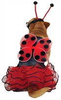 Casual Canine Lucky Bug Costume Red - XLARGE