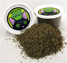 Krazy Kitty Catnip (1.5 oz)