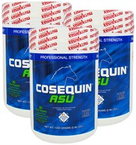 Cosequin� ASU for Horses 3-PACK (3900 gm)