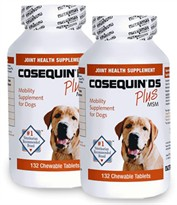 2-PACK Cosequin DS PLUS MSM Chewable Tablets (264 Count)
