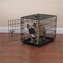Crate Appeal Crate Medium - Black