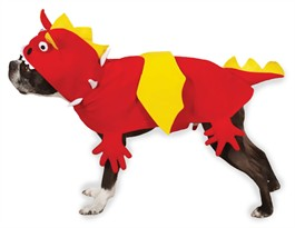 Zack & Zoey Dragon Costume - SMALL
