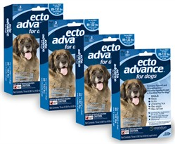 12 MONTH EctoAdvance for Dogs 89-132 lbs