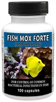 Fish Mox Forte antibacterial for fish, fishmox