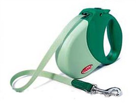 Flexi Expression Retractable Leash Green - Medium/Large