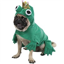 Prince Of Frogs Costume - XSMALL