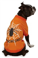 Zack & Zoey Halloween Glow Web Tee Orange - S/M (14&quot;)