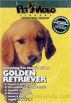 Golden Retrievers � DVD