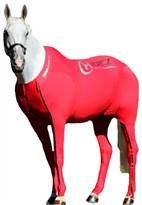 Hidez Horse Compression Suits - RED (58 - 59 3/4 inches)