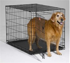 iCrate Folding Dog Crate - 42 x 28 x 30 BLACK