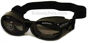 Doggles ILS - Interchangeable Lens System - Metallic Black Frame / Smoke Lens