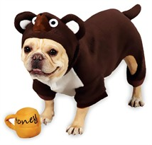 Zack & Zoey Lil' Honey Bear Halloween Costume - XSMALL