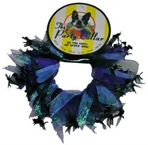Halloween Party Collar - Cats & Witch - Large (14&quot;)