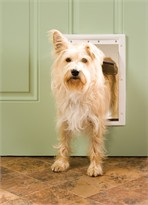 Petsafe - Plastic Pet Door, Premium White, Medium