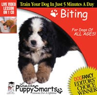 PuppySmarts Biting (Video CD)
