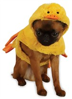 Zack & Zoey Quakers Duck Costume - XSMALL