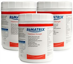 3-PACK ReMATRIX Soft Chews (360 Chews)
