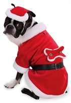Santa Paws Dog Costume - LARGE