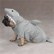 Zack & Zoey Land Shark Costume - SMALL