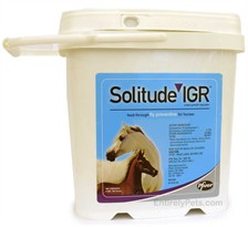 Solitude IGR - Insect Growth Regulator ( 6 LBS. 192 Doses)