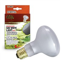 R-Zilla Incandescent Day White Light Spot (75 watt)